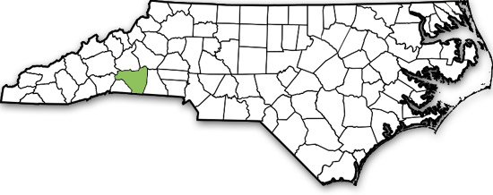 Rutherford County NC